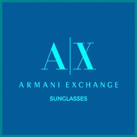 AX Sunglass